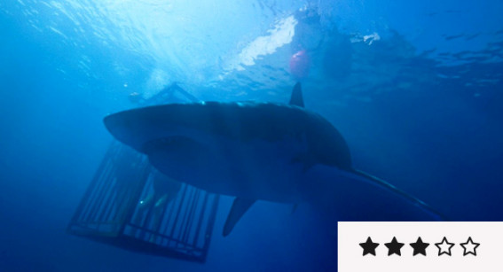 Review: '47 Metres Down' Shouldn't Be Sniffed At