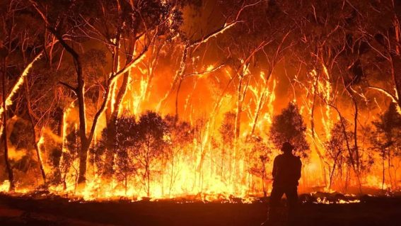 An upcoming Prime Video doco on the Black Summer bushfires isn't afraid to ask 'Burning' questions