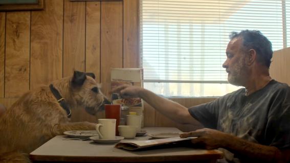 How to watch Tom Hanks' post-apocalyptic journey Finch in Australia