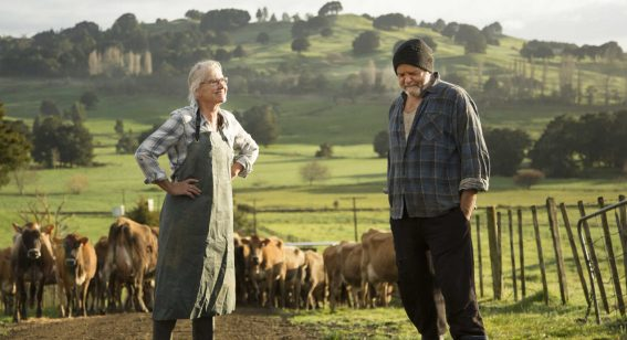 Director of Bellbird on his feature film ode to the rural Kiwi way of life
