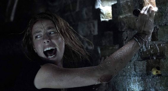 New release film Crawl is a beer-guzzling blast of survival horror