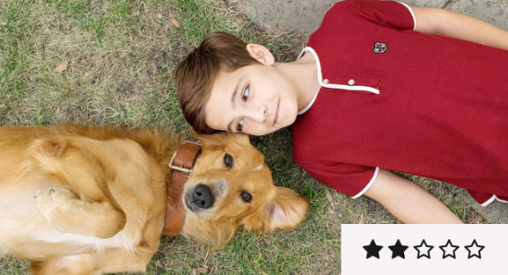 Review: 'A Dog's Purpose' is Too Much Pupper Schmaltz