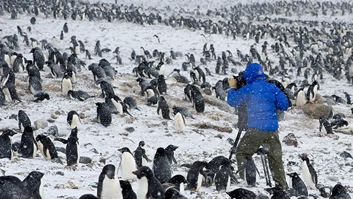 BBC's Frozen Planet