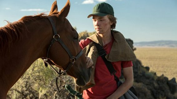 Lean on Pete is an unforgettable film about the teenage experience